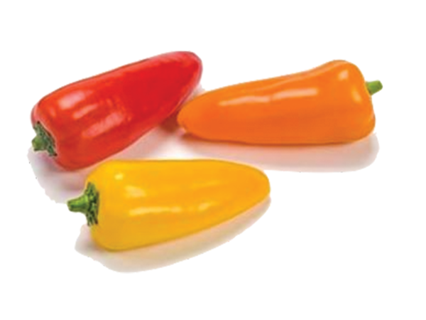 Mini Sweet Pepper